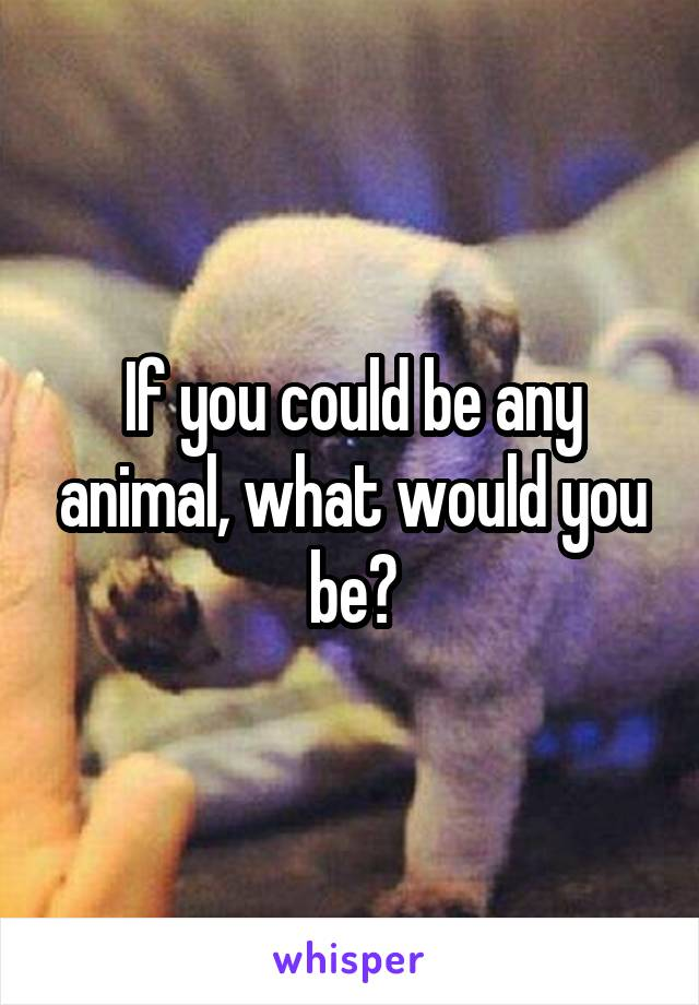 If you could be any animal, what would you be?