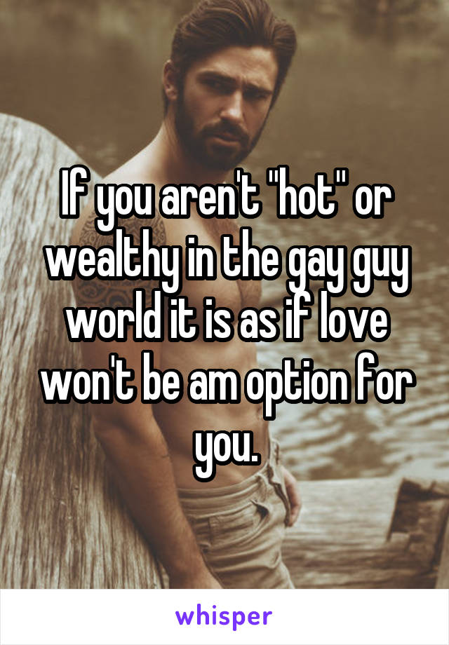 "If you aren't ""hot"" or wealthy in the gay guy world it is as if love won't be am option for you."