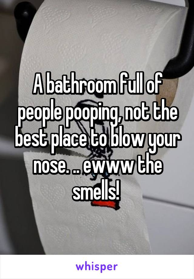 A bathroom full of people pooping, not the best place to blow your nose. .. ewww the smells!