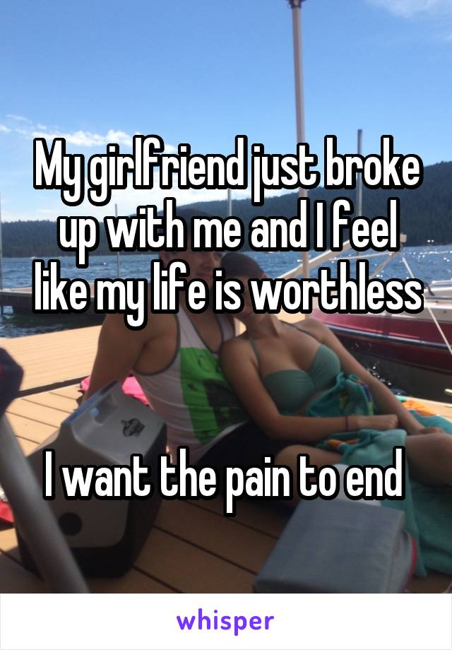 My girlfriend just broke up with me and I feel like my life is worthless   I want the pain to end