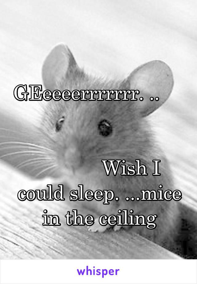GEeeeerrrrrrr. ..                                                                                     Wish I could sleep. ...mice in the ceiling