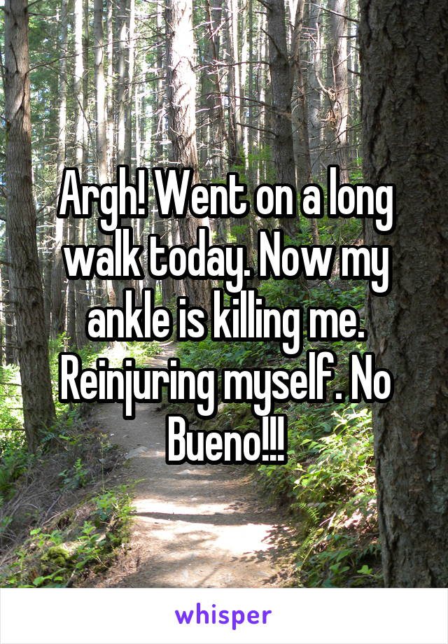 Argh! Went on a long walk today. Now my ankle is killing me. Reinjuring myself. No Bueno!!!