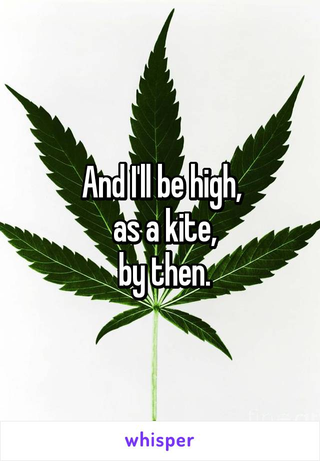 And I'll be high,  as a kite,  by then.