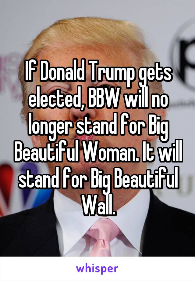If Donald Trump gets elected, BBW will no longer stand for Big Beautiful Woman. It will stand for Big Beautiful Wall.