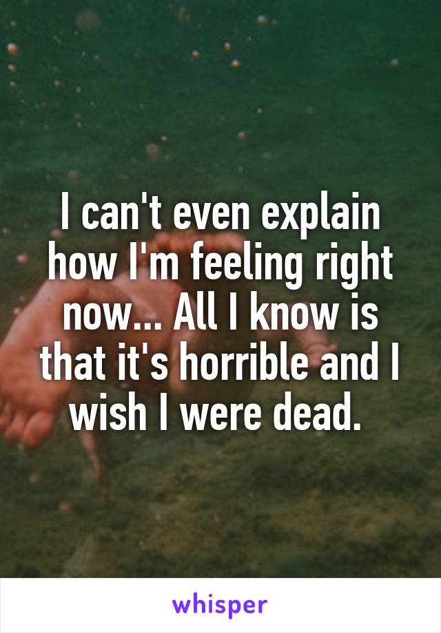I can't even explain how I'm feeling right now... All I know is that it's horrible and I wish I were dead.