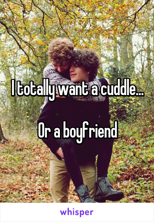 I totally want a cuddle...  Or a boyfriend