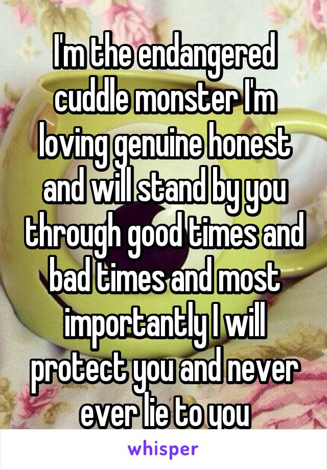 I'm the endangered cuddle monster I'm loving genuine honest and will stand by you through good times and bad times and most importantly I will protect you and never ever lie to you