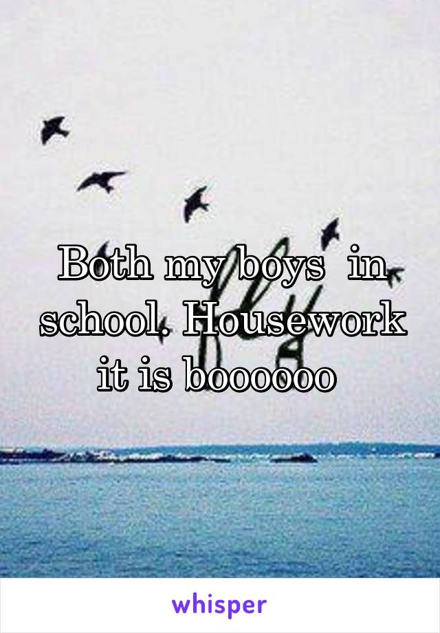 Both my boys  in school. Housework it is boooooo