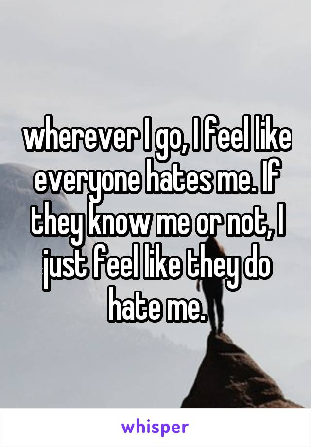 wherever I go, I feel like everyone hates me. If they know me or not, I just feel like they do hate me.