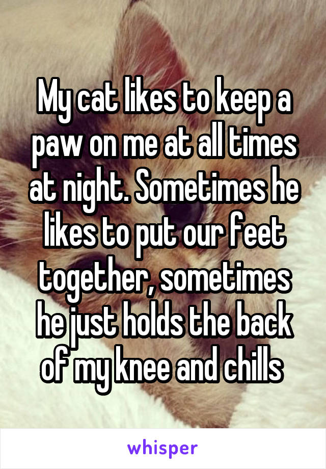 My cat likes to keep a paw on me at all times at night. Sometimes he likes to put our feet together, sometimes he just holds the back of my knee and chills