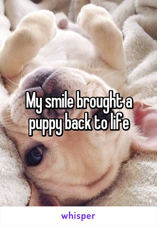 My smile brought a puppy back to life