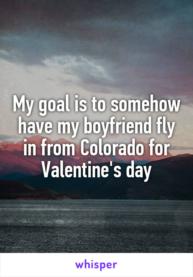 My goal is to somehow have my boyfriend fly in from Colorado for Valentine's day