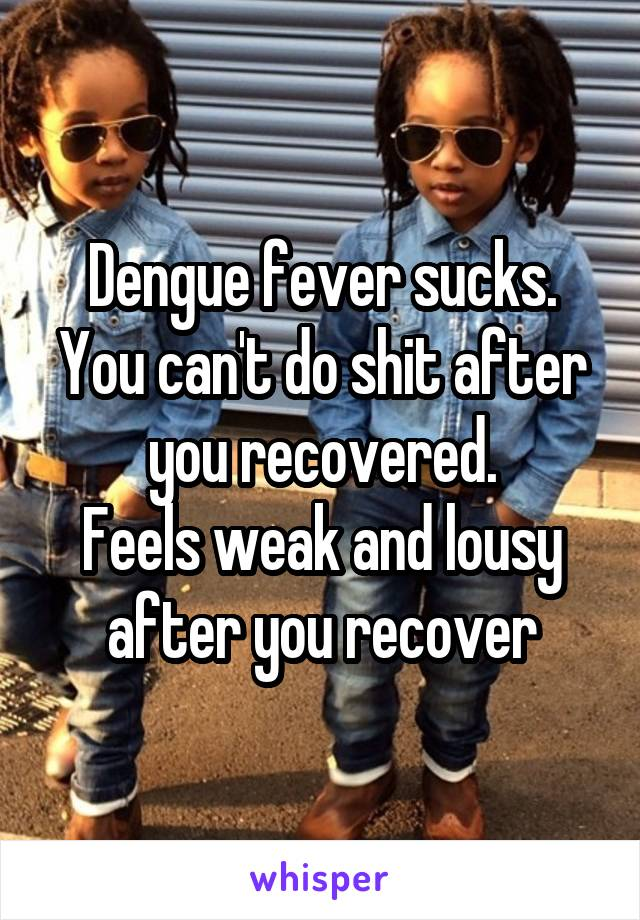 Dengue fever sucks. You can't do shit after you recovered. Feels weak and lousy after you recover