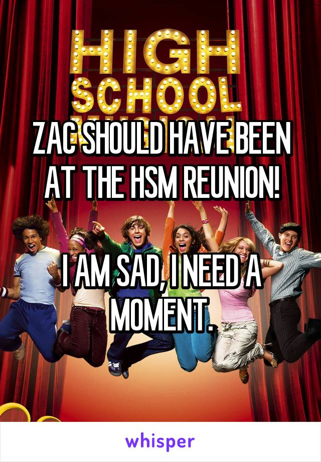 ZAC SHOULD HAVE BEEN AT THE HSM REUNION!  I AM SAD, I NEED A MOMENT.