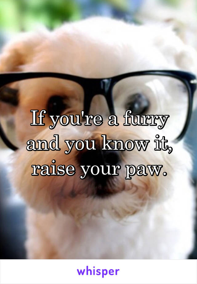 If you're a furry and you know it, raise your paw.