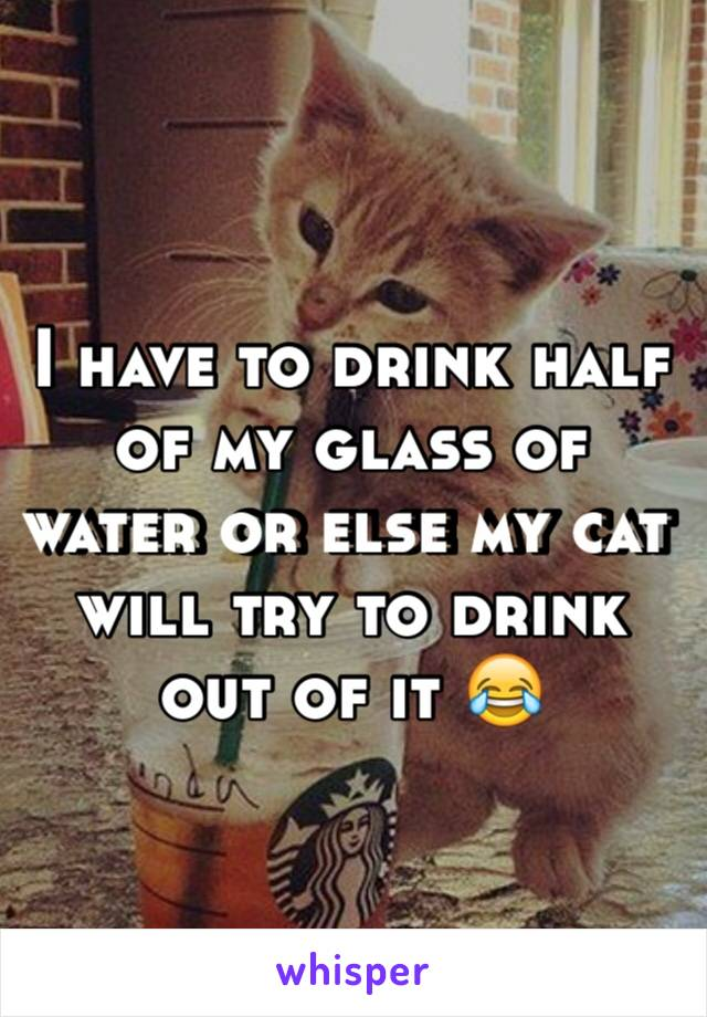 I have to drink half of my glass of water or else my cat will try to drink out of it 😂