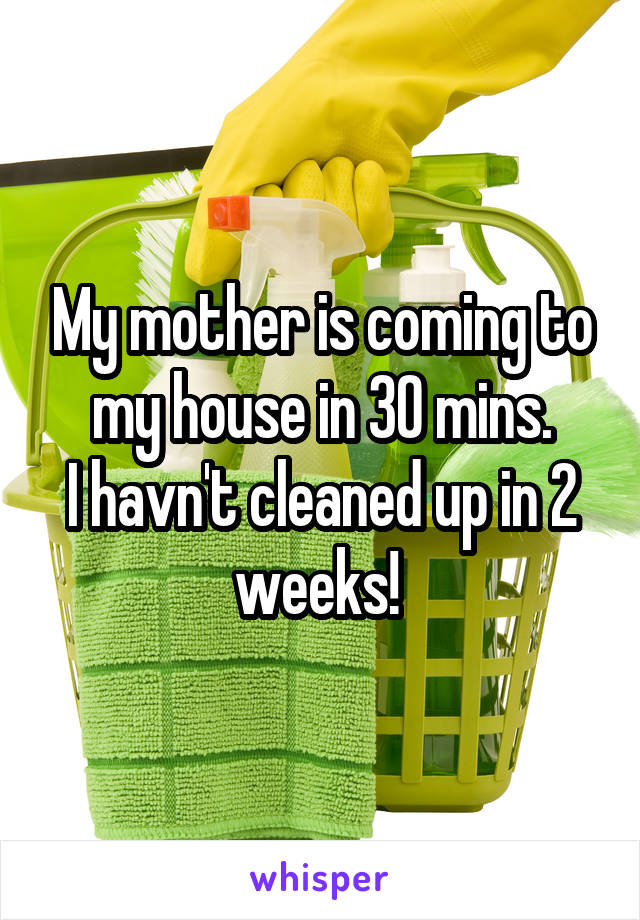 My mother is coming to my house in 30 mins. I havn't cleaned up in 2 weeks!