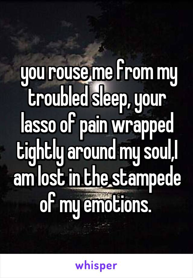 you rouse me from my troubled sleep, your lasso of pain wrapped tightly around my soul,I am lost in the stampede of my emotions.