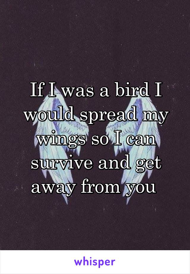 If I was a bird I would spread my wings so I can survive and get away from you