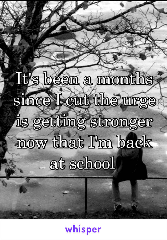 It's been a months since I cut the urge is getting stronger now that I'm back at school