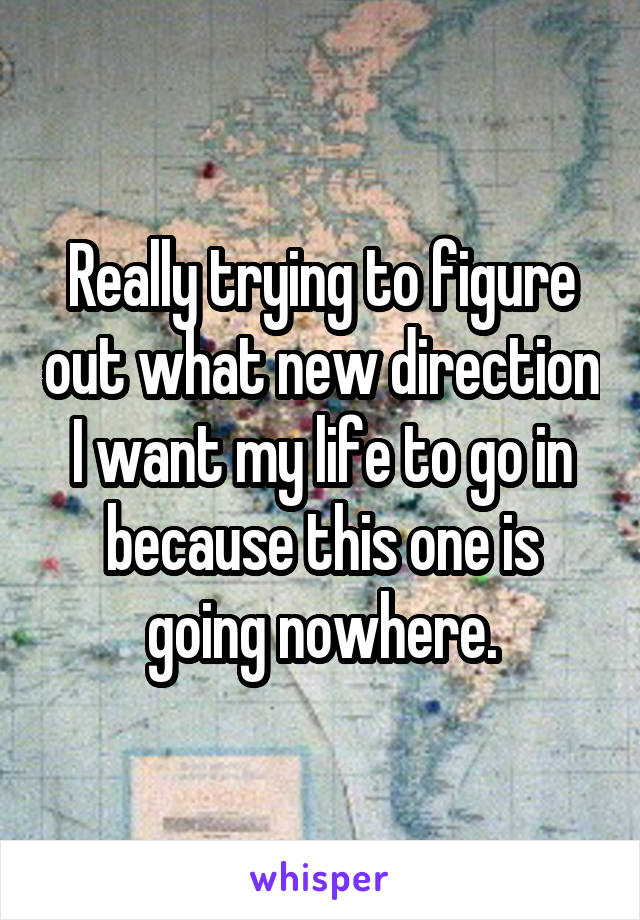 Really trying to figure out what new direction I want my life to go in because this one is going nowhere.