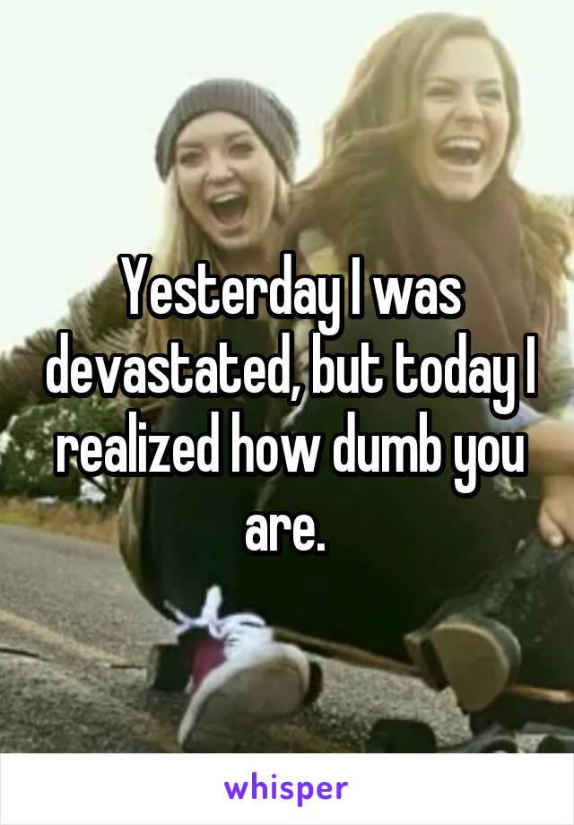 Yesterday I was devastated, but today I realized how dumb you are.