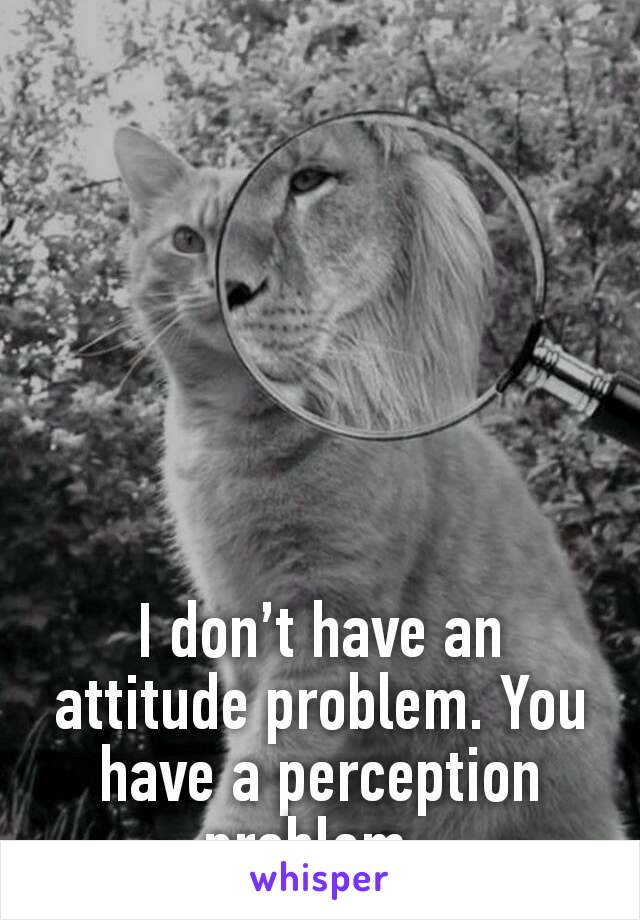 I don't have an attitude problem. You have a perception problem.