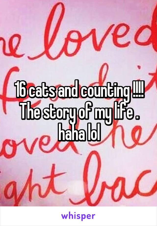 16 cats and counting !!!! The story of my life . haha lol