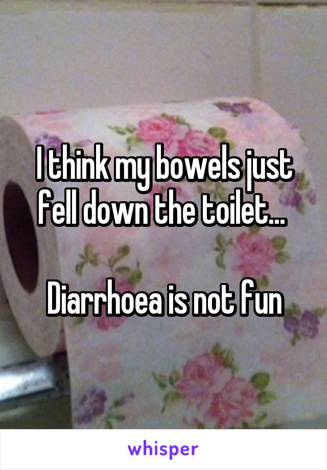 I think my bowels just fell down the toilet...   Diarrhoea is not fun
