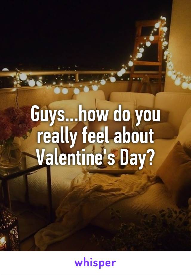 Guys...how do you really feel about Valentine's Day?