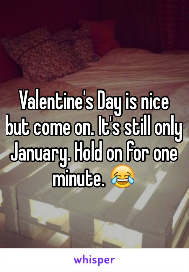 Valentine's Day is nice but come on. It's still only January. Hold on for one minute. 😂