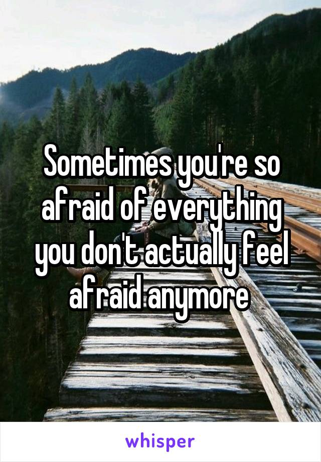 Sometimes you're so afraid of everything you don't actually feel afraid anymore