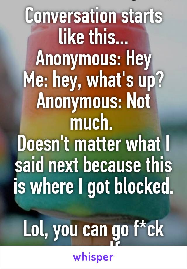 Conversation starts like this... Anonymous: Hey Me: hey, what's up? Anonymous: Not much.  Doesn't matter what I said next because this is where I got blocked.  Lol, you can go f*ck yourself.
