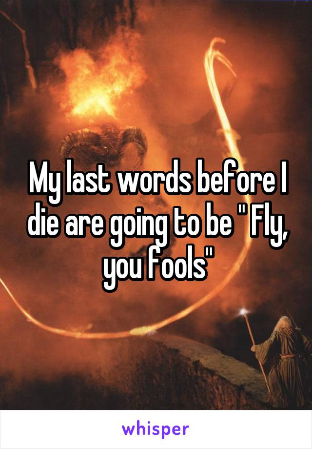 """My last words before I die are going to be """" Fly, you fools"""""""