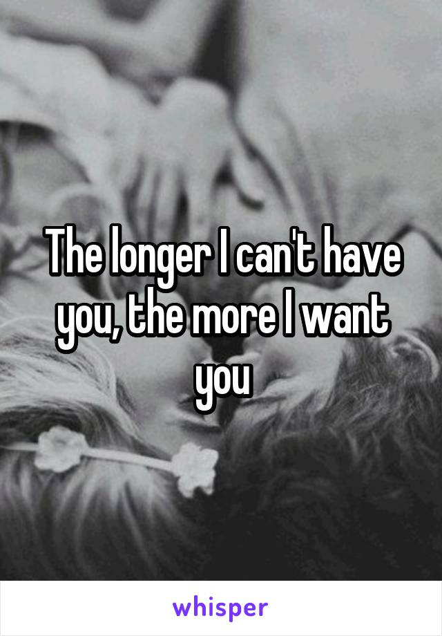 The longer I can't have you, the more I want you