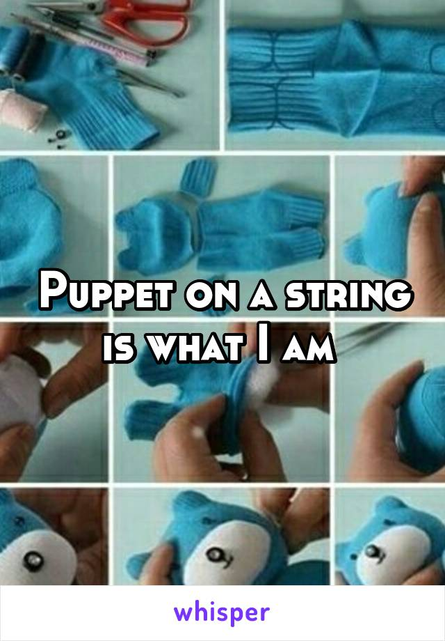 Puppet on a string is what I am