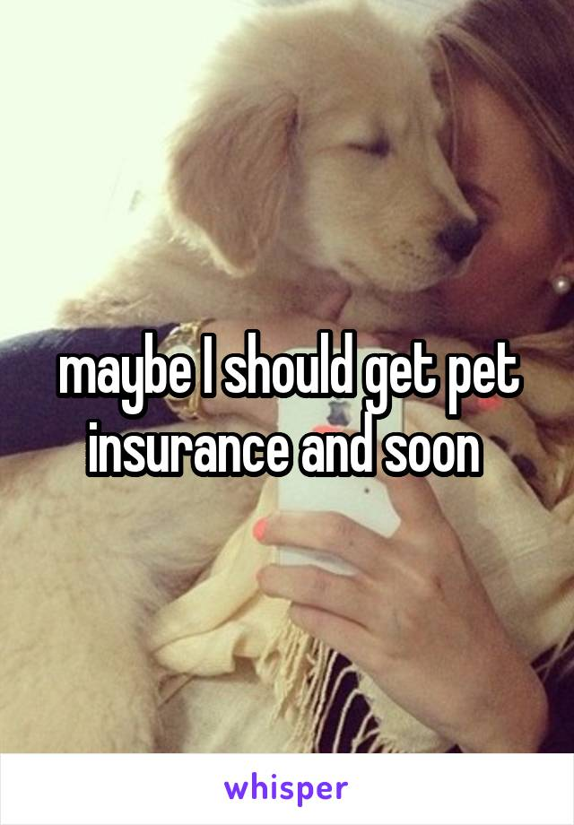 maybe I should get pet insurance and soon