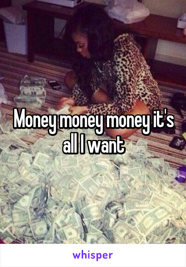 Money money money it's all I want