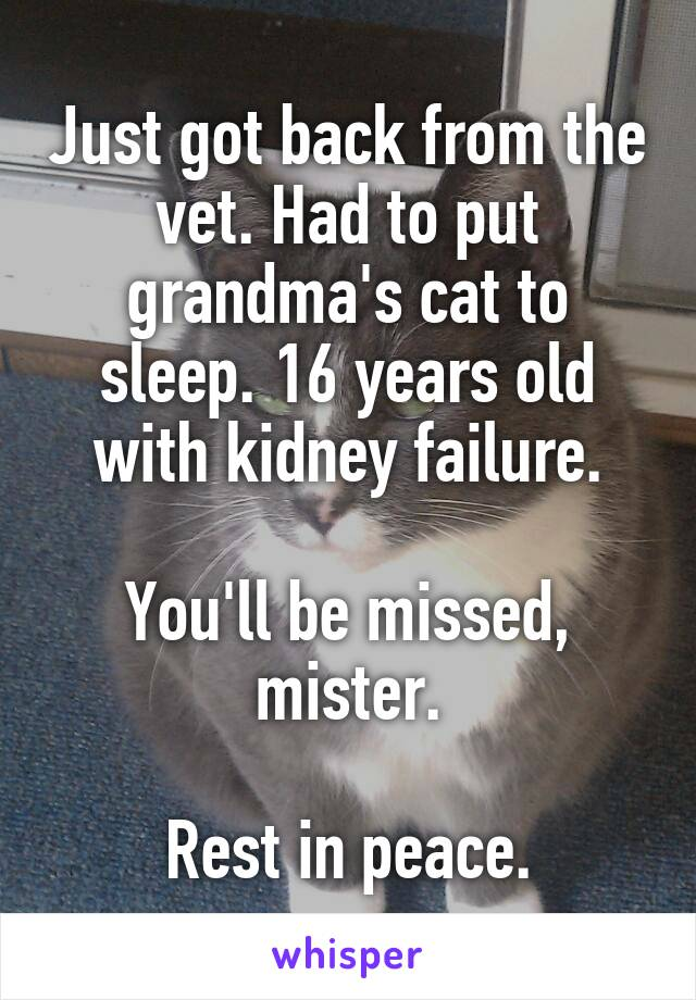 Just got back from the vet. Had to put grandma's cat to sleep. 16 years old with kidney failure.  You'll be missed, mister.  Rest in peace.
