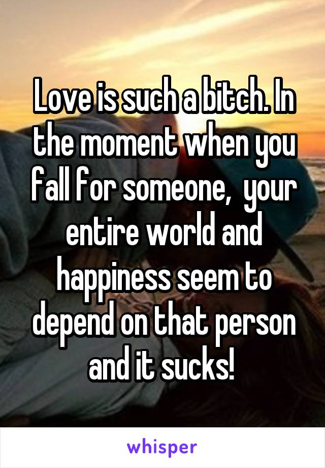 Love is such a bitch. In the moment when you fall for someone,  your entire world and happiness seem to depend on that person and it sucks!