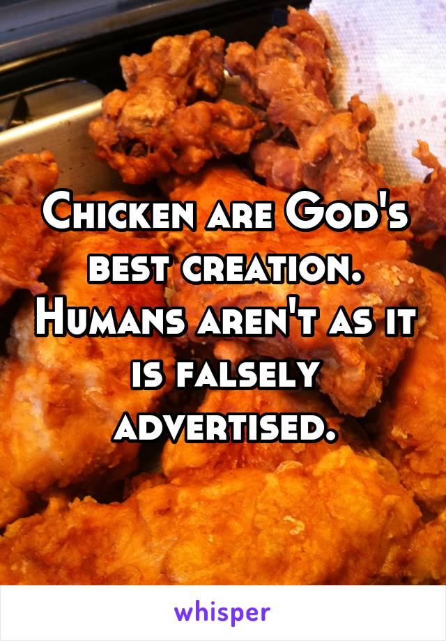 Chicken are God's best creation. Humans aren't as it is falsely advertised.