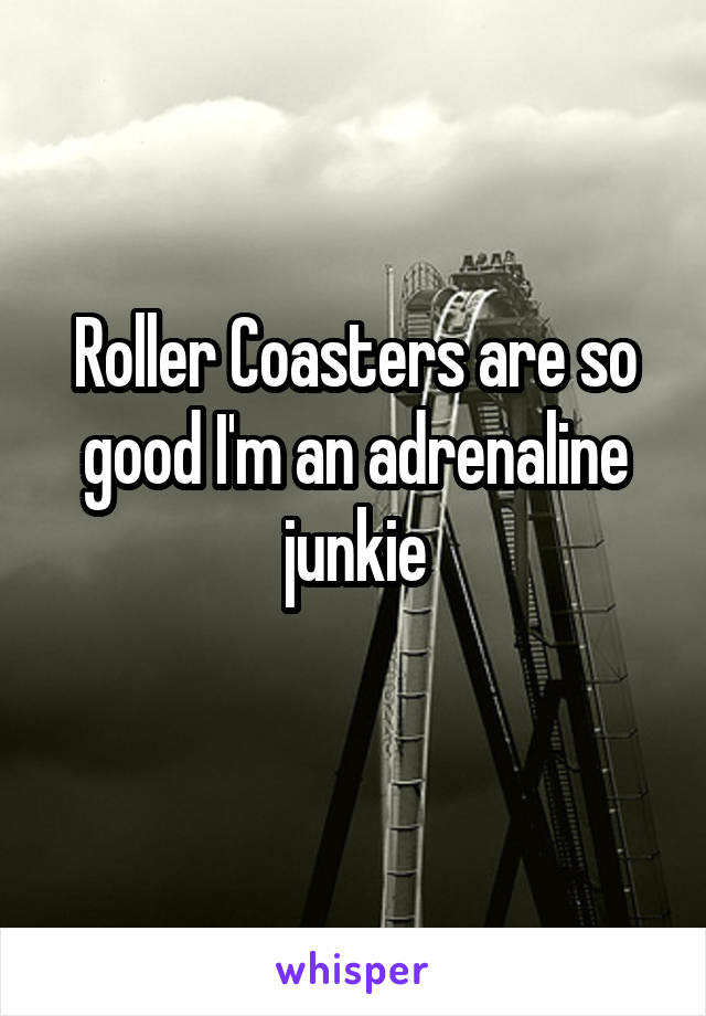 Roller Coasters are so good I'm an adrenaline junkie