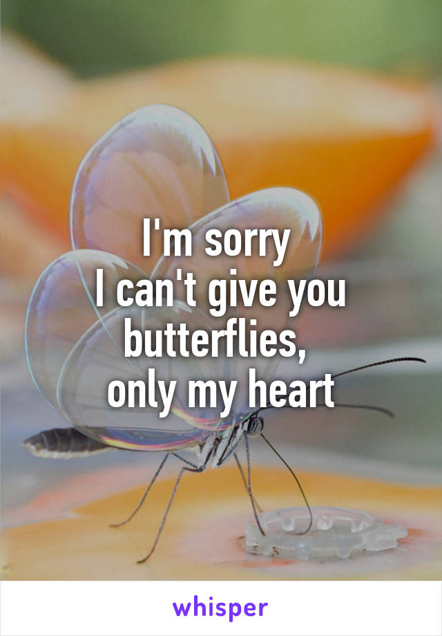 I'm sorry  I can't give you butterflies,  only my heart