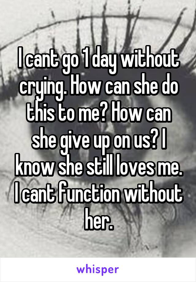 I cant go 1 day without crying. How can she do this to me? How can she give up on us? I know she still loves me. I cant function without her.