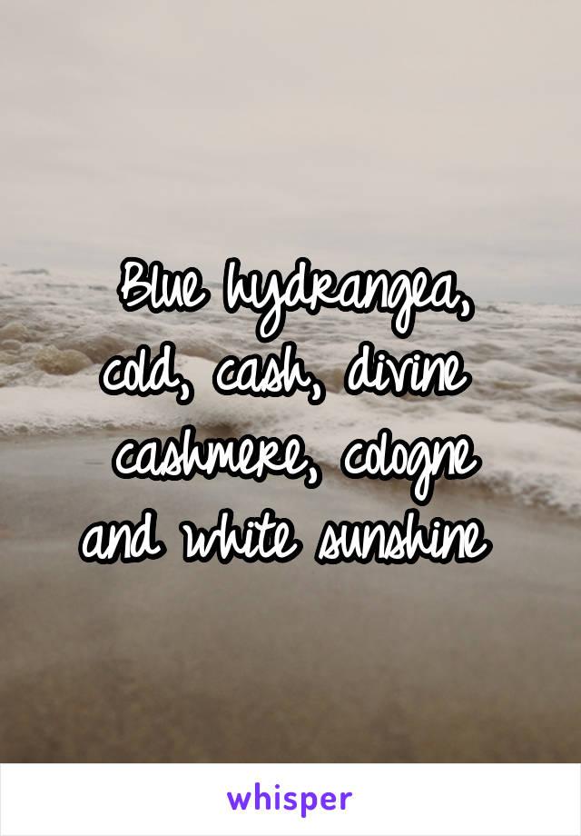 Blue hydrangea, cold, cash, divine  cashmere, cologne and white sunshine