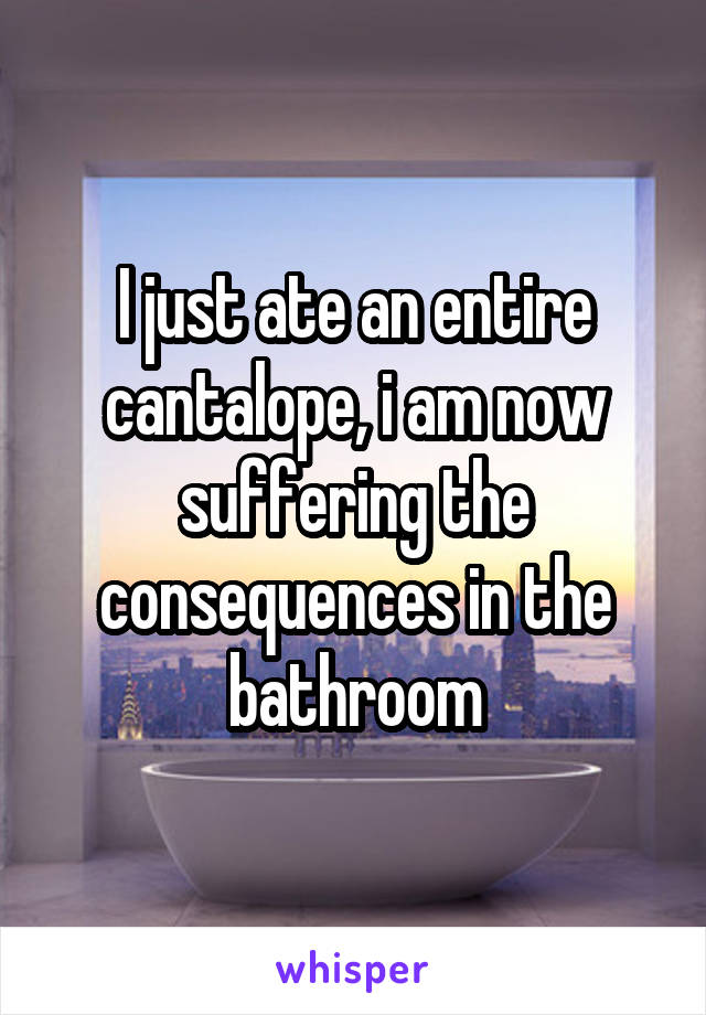 I just ate an entire cantalope, i am now suffering the consequences in the bathroom