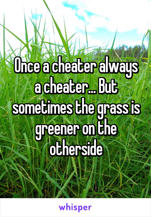 Once a cheater always a cheater... But sometimes the grass is greener on the otherside