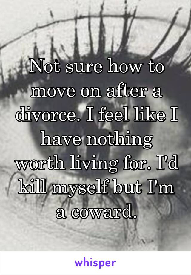 Not sure how to move on after a divorce. I feel like I have nothing worth living for. I'd kill myself but I'm a coward.