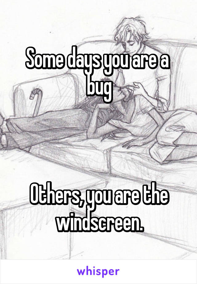 Some days you are a  bug    Others, you are the windscreen.