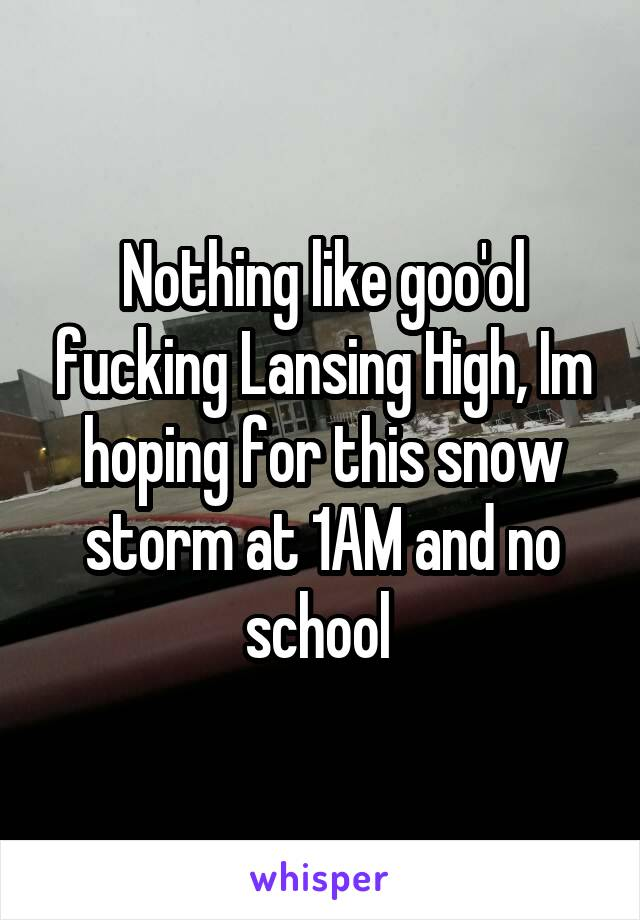 Nothing like goo'ol fucking Lansing High, Im hoping for this snow storm at 1AM and no school